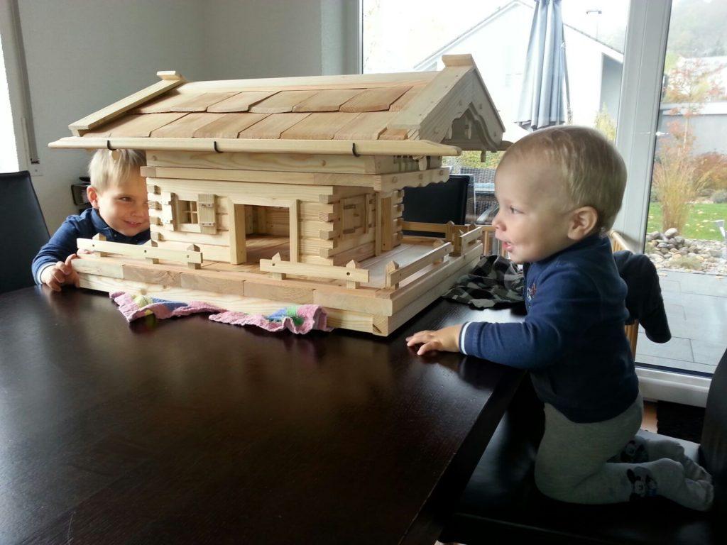 Vogelhaus Bauanleitung Per Video Fur Ihr Perfektes Vogelhaus